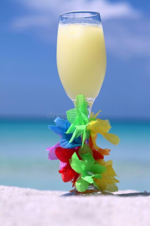 De cocktail van de zomer stock fotografie