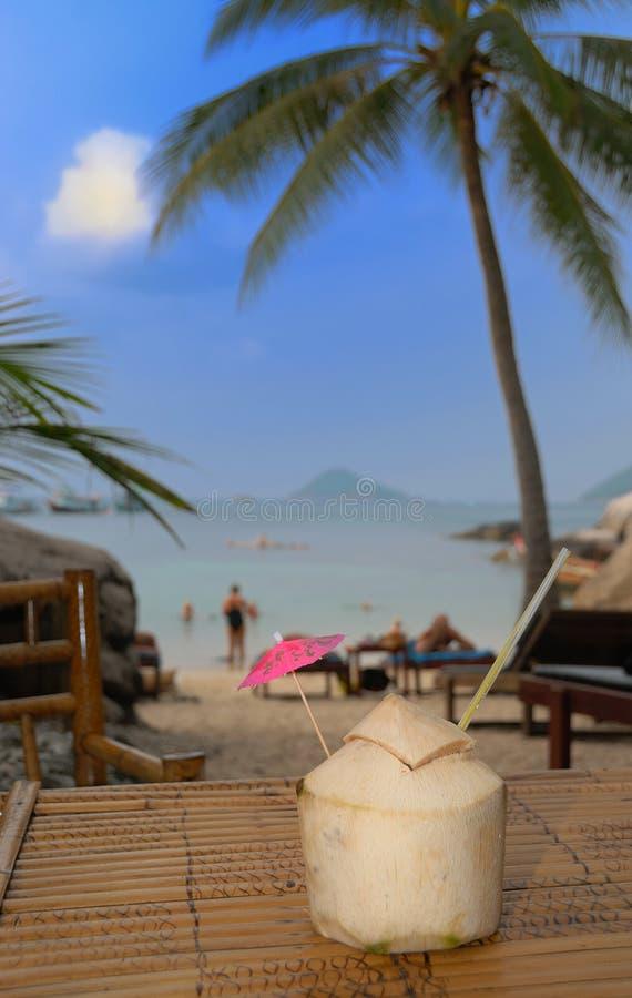 De Cocktail van het strand stock foto