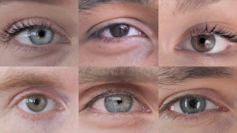 De collage van Blinking Eye of Young People royalty-vrije stock afbeeldingen