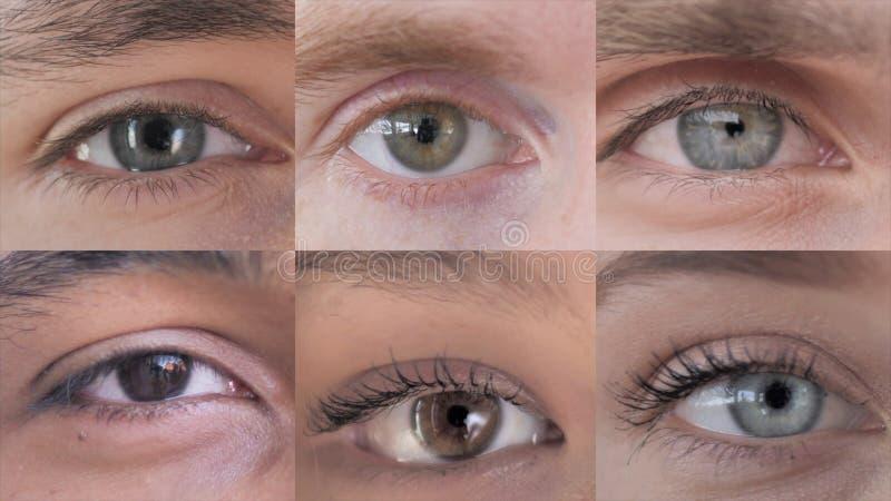 De collage van Blinking Oog, sluit op stock foto