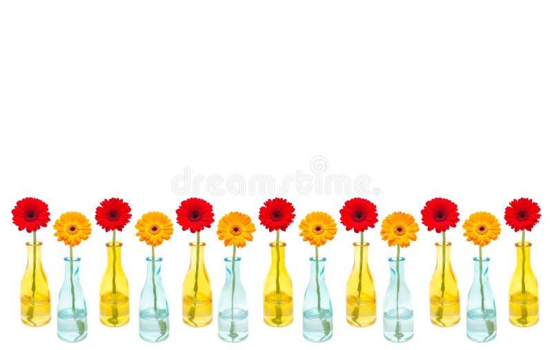 De collage van de bloem stock fotografie