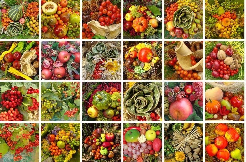 De collage van de oogst stock foto
