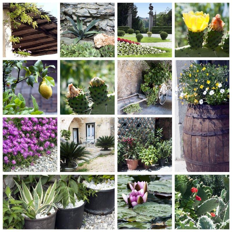 De collage van de tuin royalty-vrije stock afbeelding