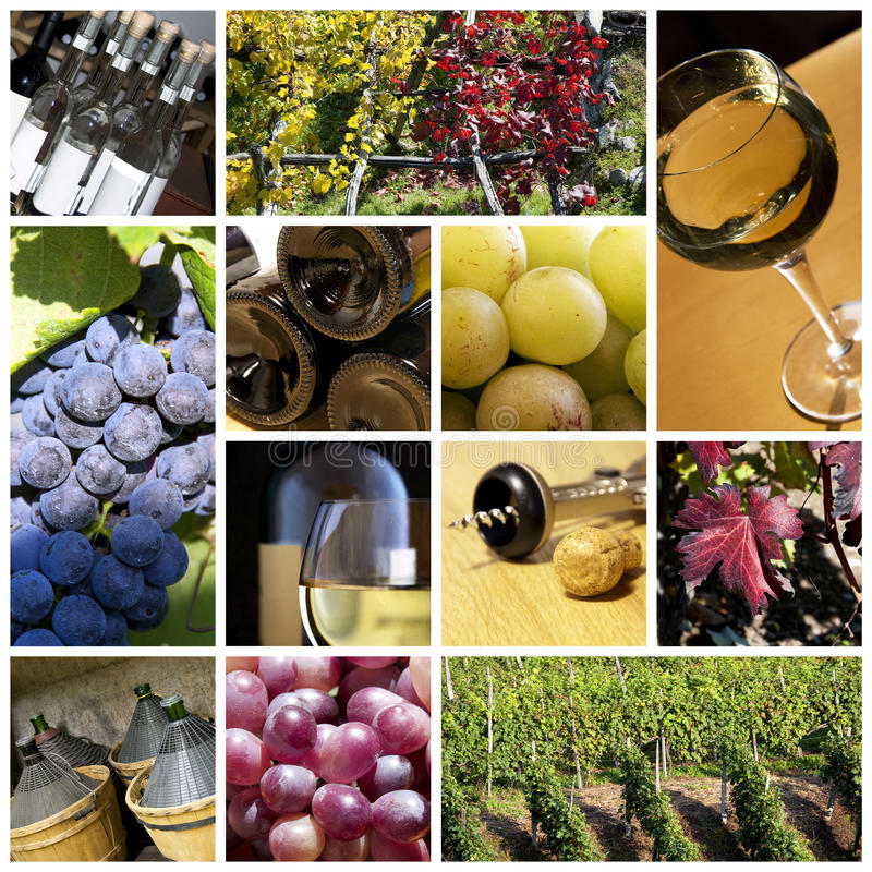 De collage van de wijn stock fotografie