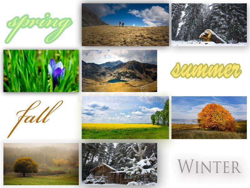 De collage van het seizoen royalty-vrije stock foto's