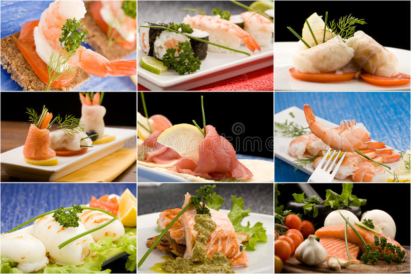 De Collage van vissen royalty-vrije stock afbeelding