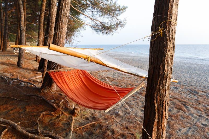 De comfortabele hangmat met bescherming tegen direct zonlicht hangt tussen pijnbomen op het strand van de Zwarte Zee royalty-vrije stock foto