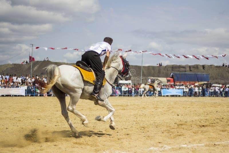 De competities van de paardspeer stock foto's