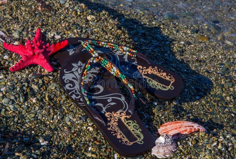 De concept-wipschakelaars van de de zomervakantie met overzeese ster en shells op het strand royalty-vrije stock foto