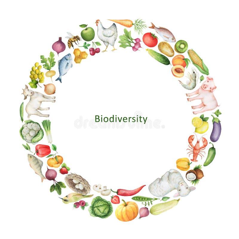 De conceptuele illustratie van de waterverfbiodiversiteit van gezond voedsel vector illustratie