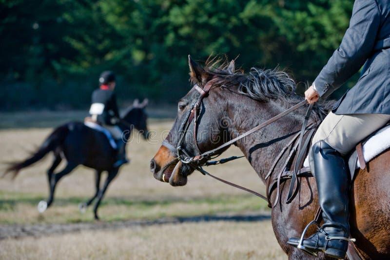 De concurrentie van het paard en van ruiters   royalty-vrije stock afbeeldingen