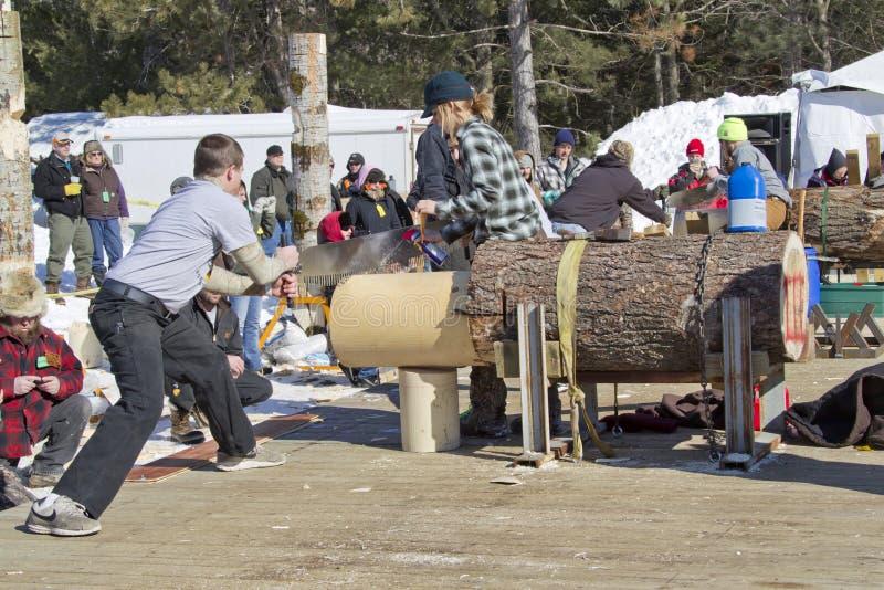 De concurrentie van houthakkerstwo man bucksaw stock foto's