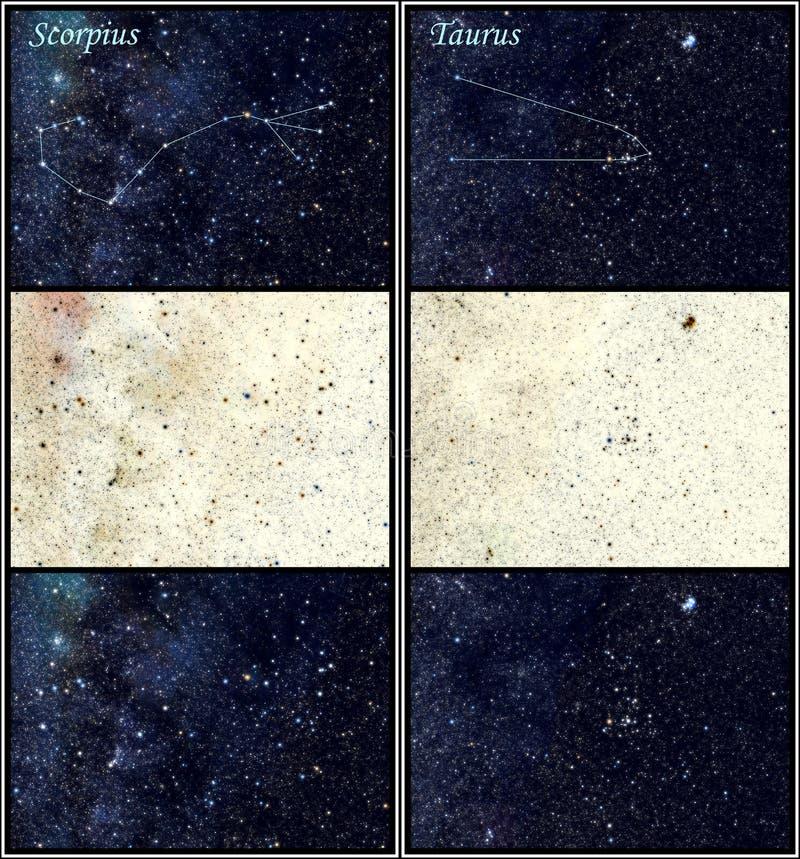 De constellaties van Scorpius en van de Stier royalty-vrije illustratie