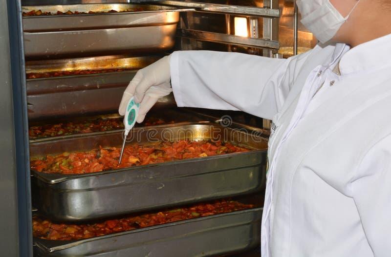De controle van de cateringstemperatuur royalty-vrije stock foto's