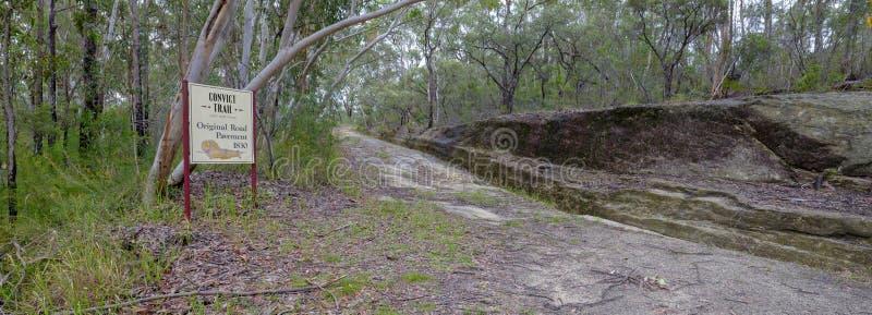 De Convict Sleep of de Grote Noordelijke Weg dichtbij Bucketty, in Hunter Valley, NSW, Austrialia royalty-vrije stock fotografie