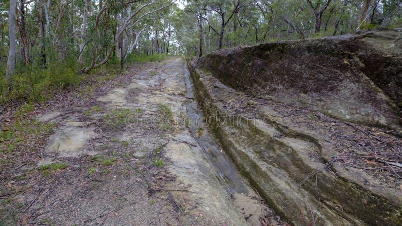 De Convict Sleep of de Grote Noordelijke Weg dichtbij Bucketty, in Hunter Valley, NSW, Austrialia stock afbeeldingen