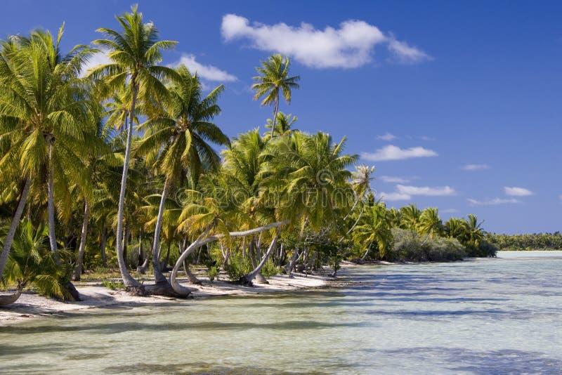 De Cook Eilanden - Tropisch Paradijs - Stille Zuidzee royalty-vrije stock fotografie