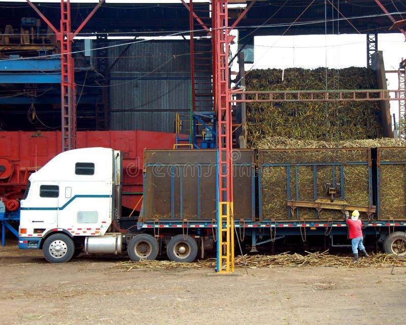 De Costa Ricaanse Molen van het Suikerriet stock foto's