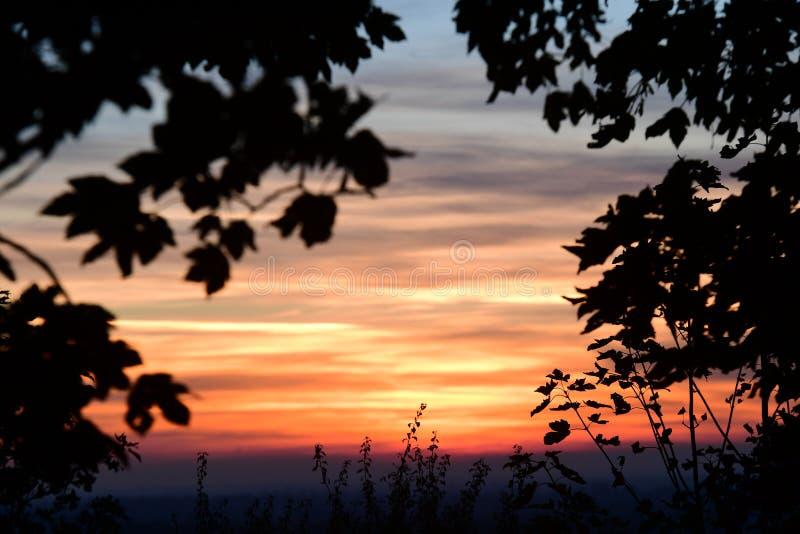 De coucher du soleil arbres cependant dans les collines de Chiltern image libre de droits