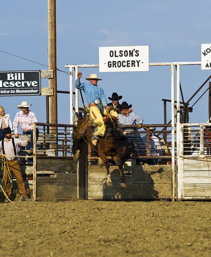 De cowboy berijdt een bucking paard bij rodeo stock fotografie