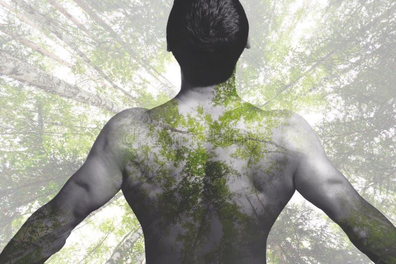 De creatieve dubbele aard van de blootstellingsmens en groen bos royalty-vrije stock foto