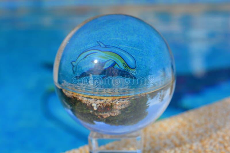 De creatieve fotografie van de lensbal, dolfijn stock afbeelding