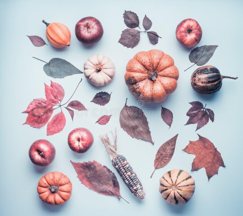 De creatieve de herfstvlakte legt met diverse kleurrijk weinig pompoen, appelen en dalingsbladeren op blauwe lijstachtergrond, ho stock foto's