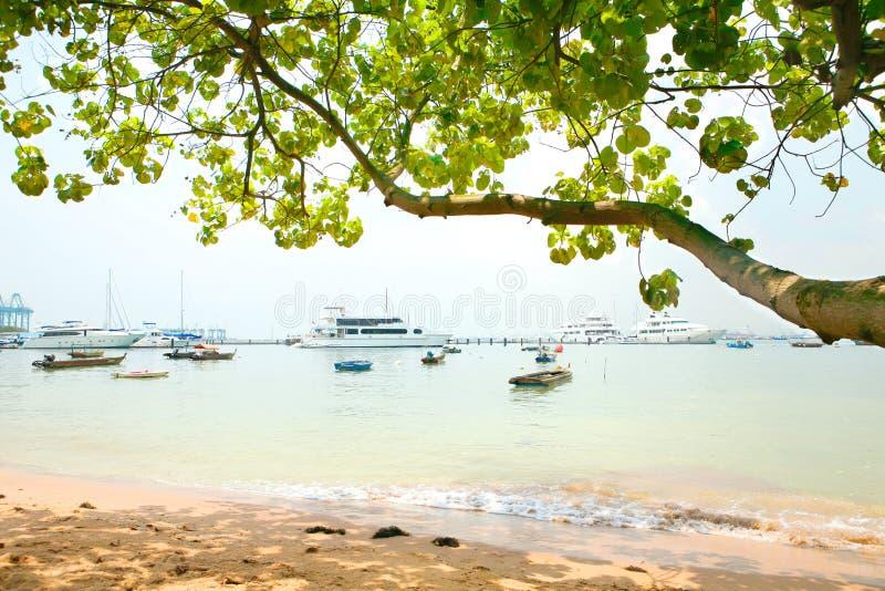De cruiseboten van het genoegen die door het strand worden vastgelegd stock afbeelding