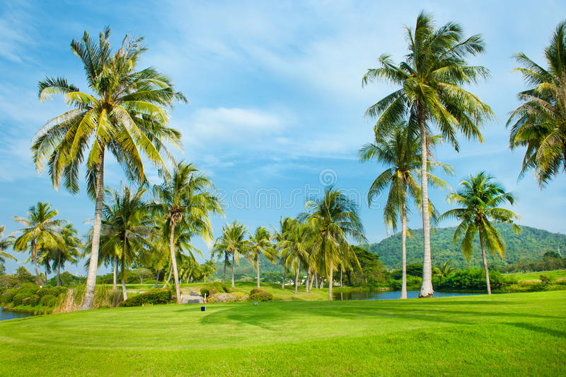 De Cursus van het golf, Landschap royalty-vrije stock foto's