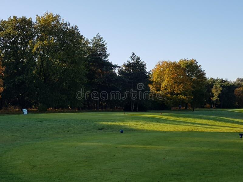De Cursusfairways en greens van het golfgolf stock afbeelding