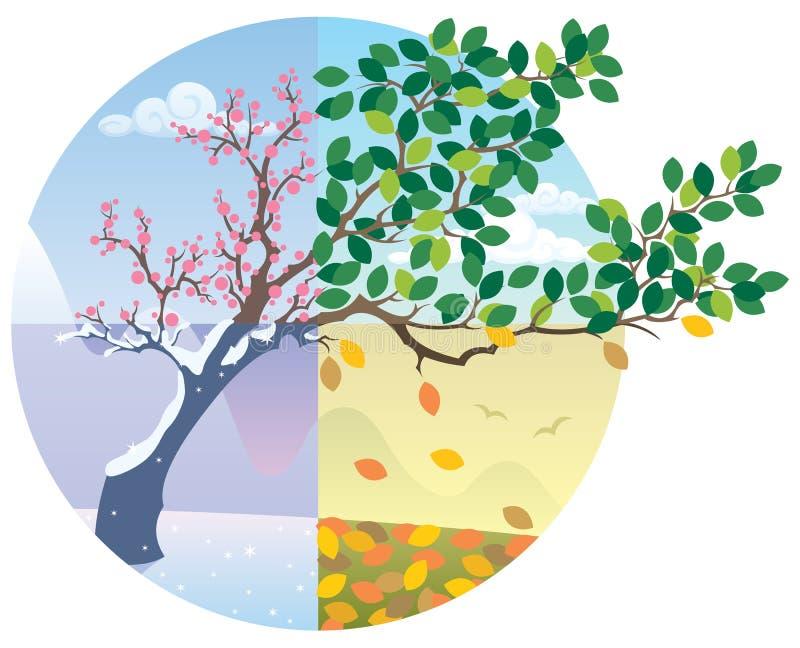 De Cyclus van seizoenen vector illustratie