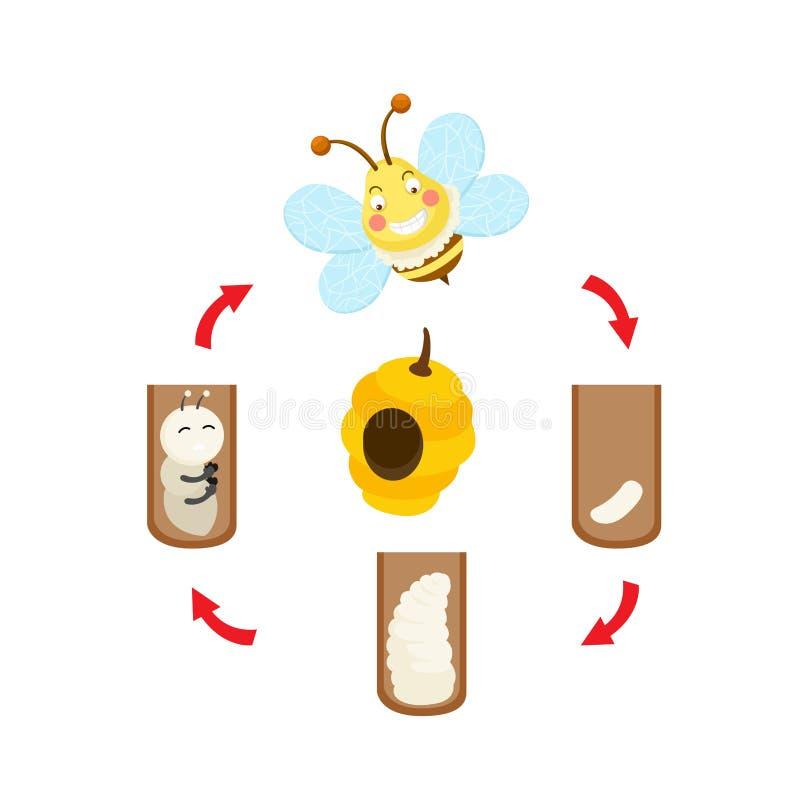 De cyclusbij van het illustratieleven stock illustratie
