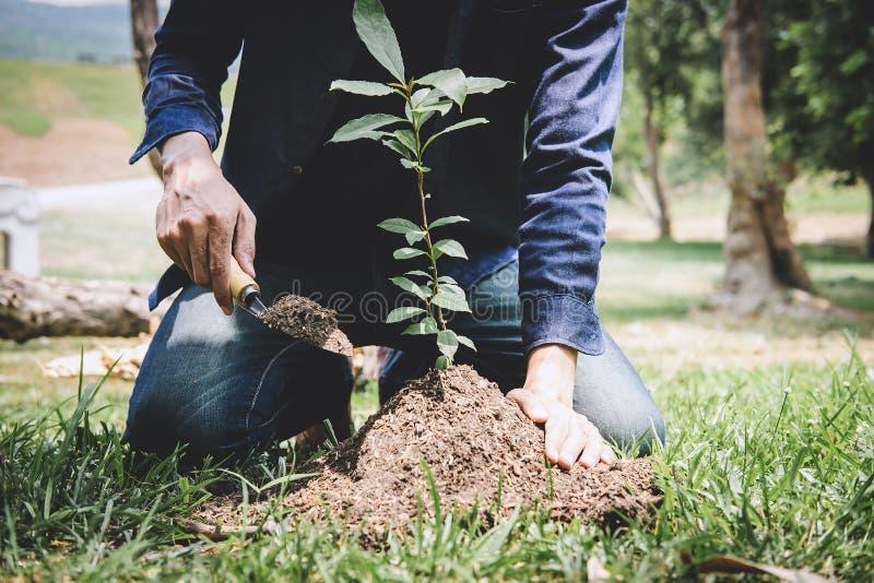 De dag van het wereldmilieu het reforesting, Handen van de jonge mens plantte zaailingen en boom het groeien in grond terwijl het royalty-vrije stock foto