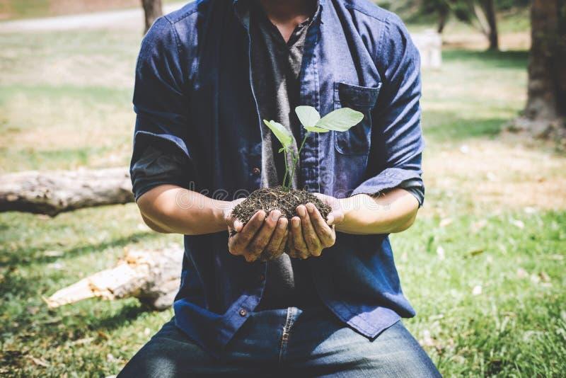 De dag van het wereldmilieu het reforesting, Handen van de jonge mens plantte zaailingen en boom het groeien in grond terwijl het stock afbeelding