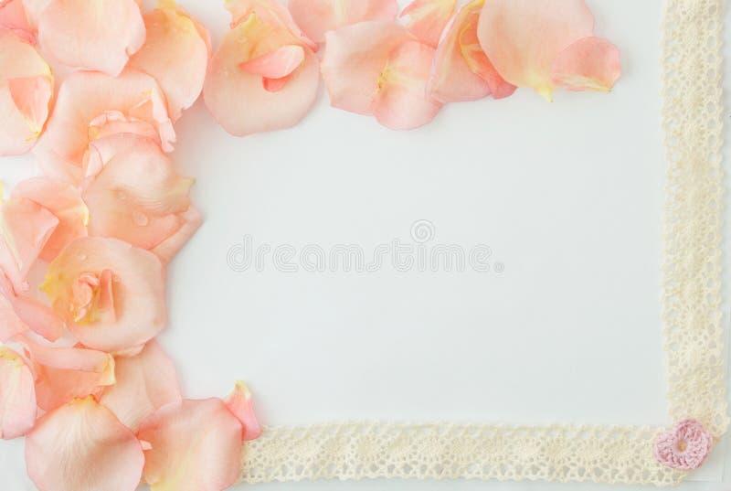 De dagachtergrond van de valentijnskaart De witte achtergrond met zachte roze nam toe stock afbeelding