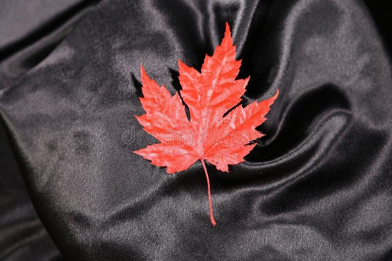 De dagblad van Canada een mooi rood Esdoornblad als aanplakbord voor de Dag van Canada te gebruiken! stock fotografie