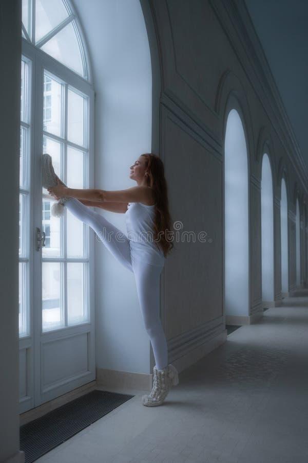 De dagelijkse geschiktheid van het huisvermageringsdieet, opleiding Volledig - rangschik lichaamslengte van mooi charmant mooi aa royalty-vrije stock foto