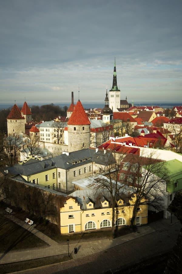 De daken van Tallin royalty-vrije stock foto's