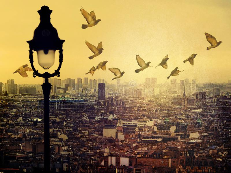 De dakenmening van Parijs van Monmartre Vliegende duiven in licht nevelige mooie hemel Stadsmening over zonsondergang royalty-vrije stock afbeelding