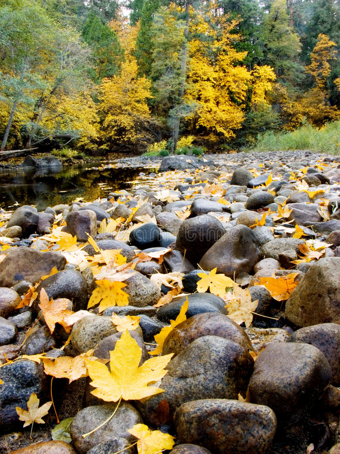 De Daling van Yosemite royalty-vrije stock foto