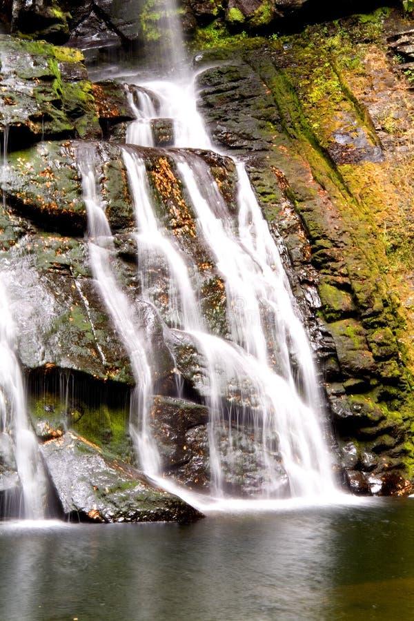 Download De dalingen van Bushkill stock afbeelding. Afbeelding bestaande uit groen - 278661