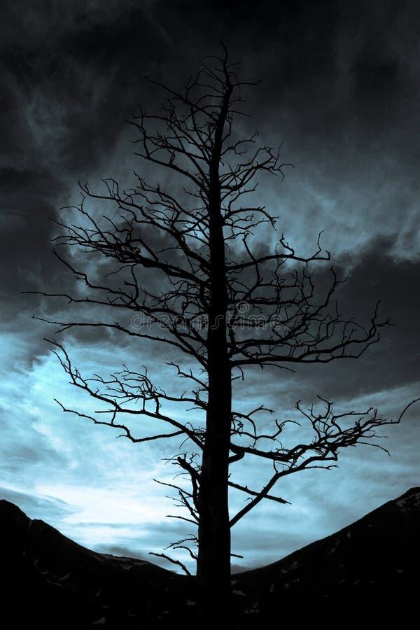 De Dalingen van de duisternis stock foto's