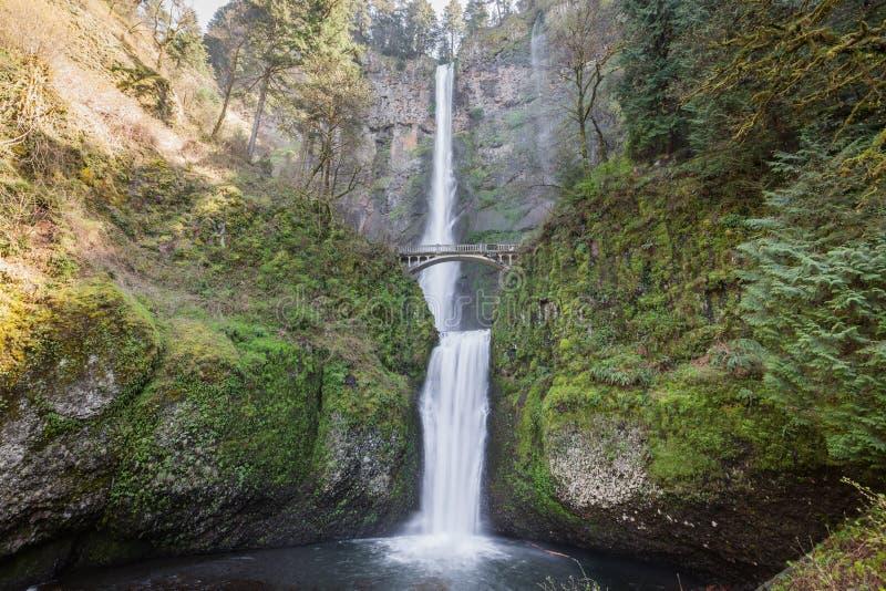 De Dalingen van Multnomah, Oregon stock afbeelding
