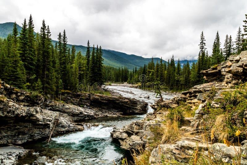 De Dalingen van de schapenrivier, het Provinciale Park van de Schapenrivier, Alberta, Canada stock fotografie