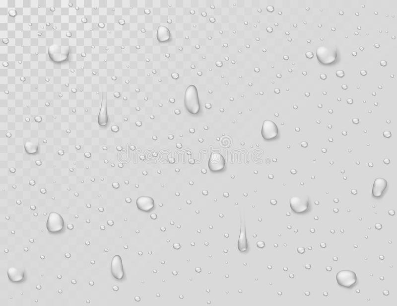 De dalingen van de waterregen Druppeltjes op transparant nat glasvenster Photorealistic waterdouche laat vallen vectorachtergrond royalty-vrije illustratie