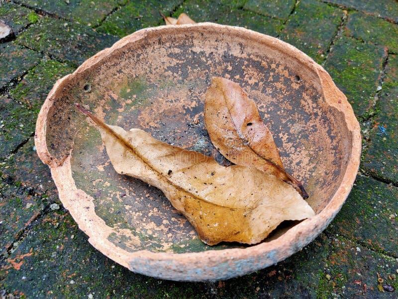 De dalingsbladeren zetten aardewerk dat in de tuin werd gebroken royalty-vrije stock fotografie