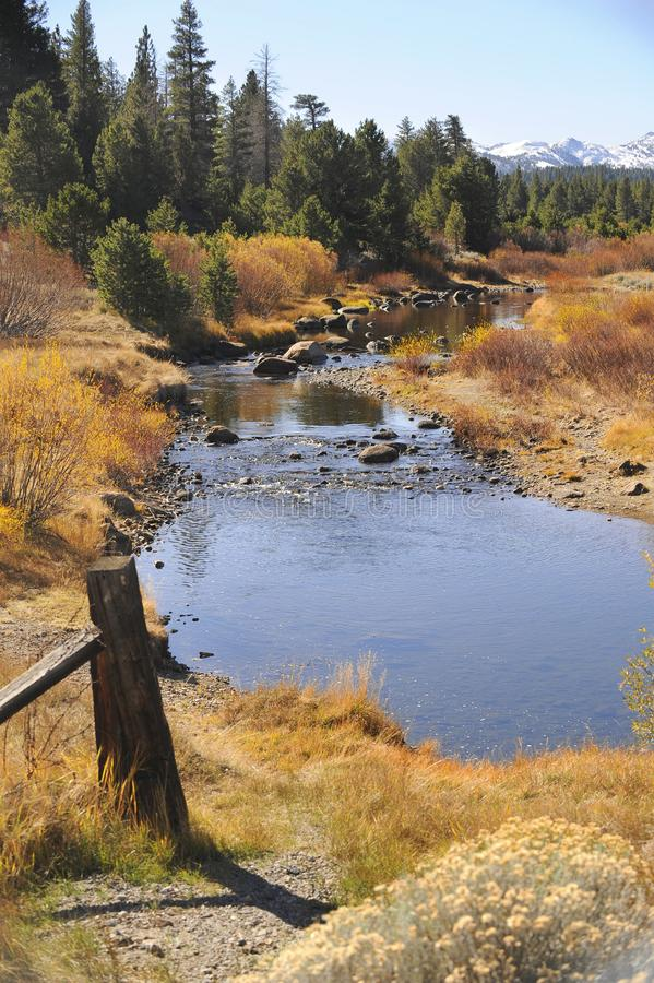 De dalingskleuren beginnen greep langs een rivierbed te nemen stock foto's