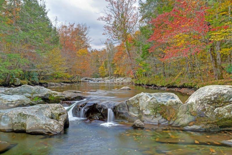 De dalingskleuren omringen een kleine stroomversnellingstroom in Smokies stock foto's