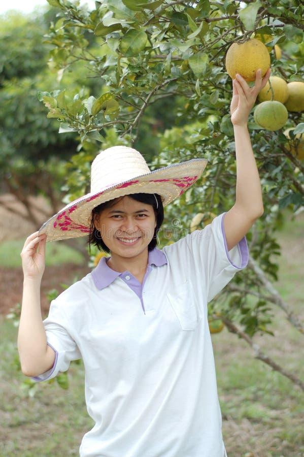 De dame van de tuinman stock fotografie