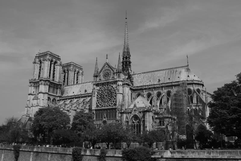 De dame van Notre van Parijs stock fotografie